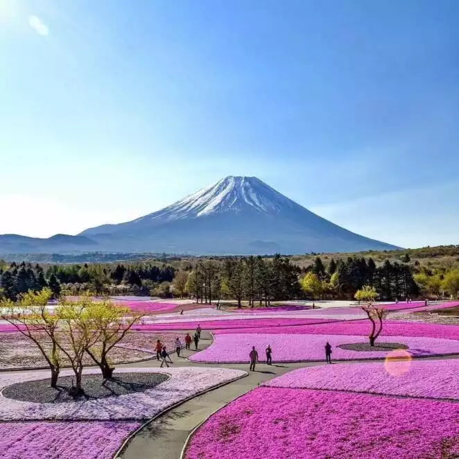 25 Photos that Prove a Perfect World Exists at Your Fingertips