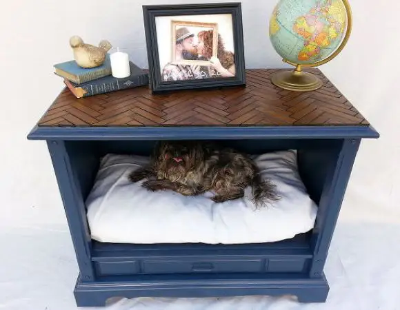 20 Cool Ideas for Dog Owners to Make Pet Ownership More Fun