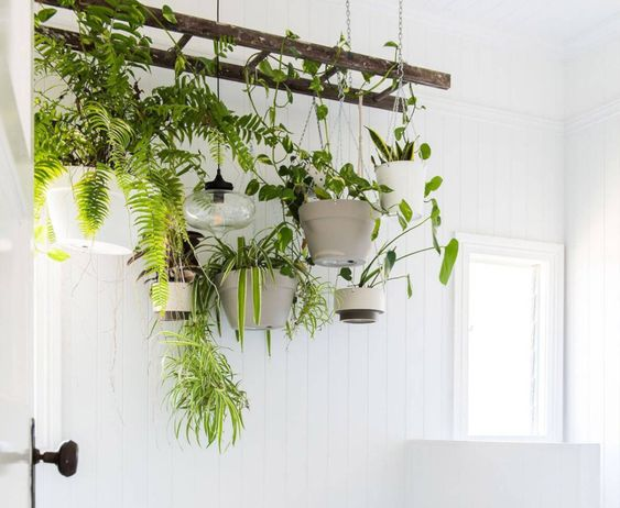 14 Ideas for a Cute DIY Plant Stand
