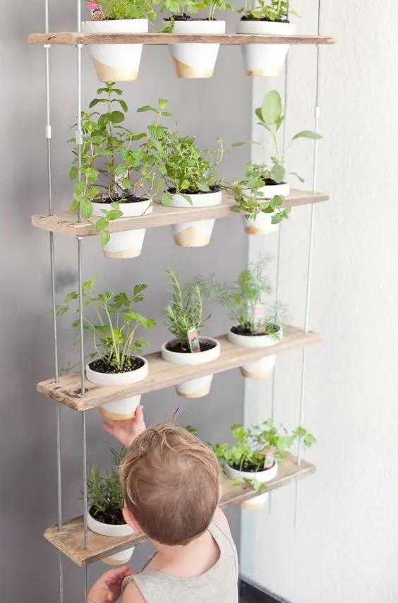 15 Ideas for Creating an off the Wall Vertical Garden at Home. Original Decor Ideas