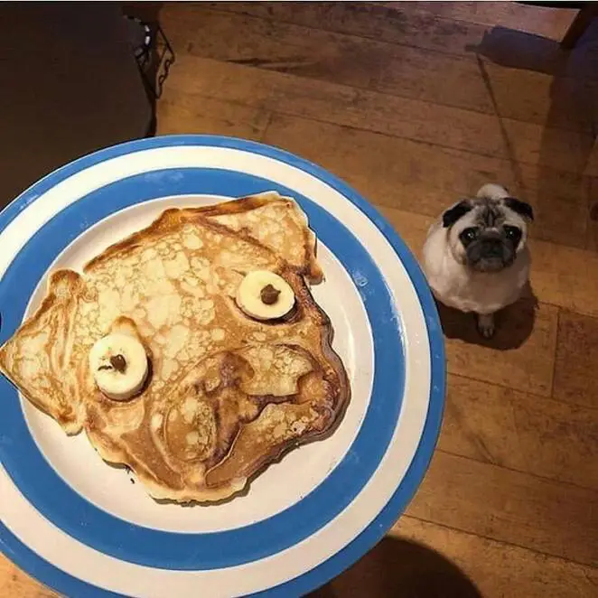 39 Slightly Disturbing Food Photos That Will Puzzle Anyone