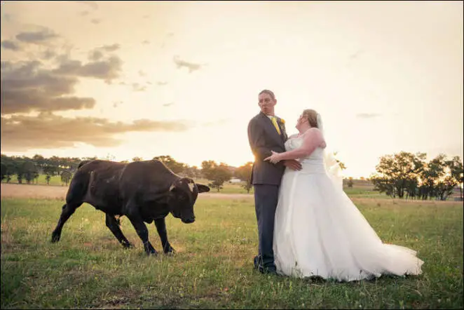 23 Hilarious Wedding Photos Most People Would Like to Forget