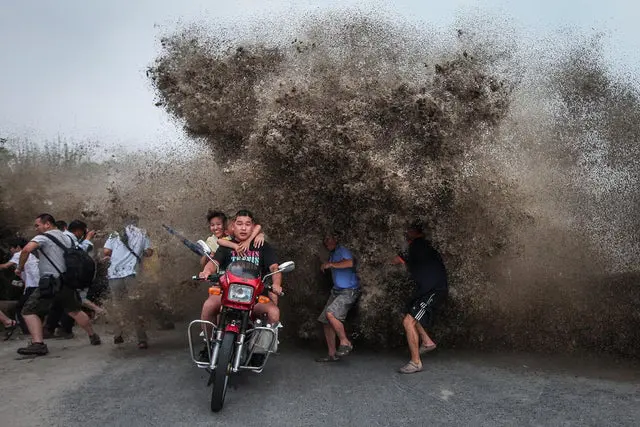 19 Unexpected Photos With Perfect Moments Caught in Frame Just on Time!