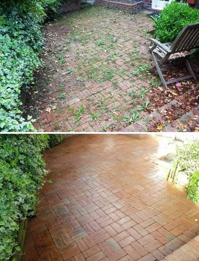 27 People Who Challenged the Dirt and Became Superheroes of Their Home and Garden