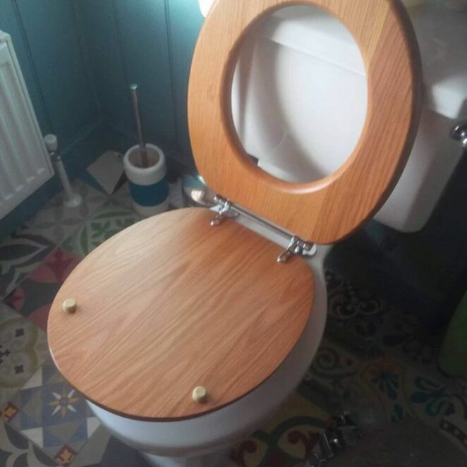 20 Bad Toilet Solutions. The Worst Ideas and Executions to Avoid