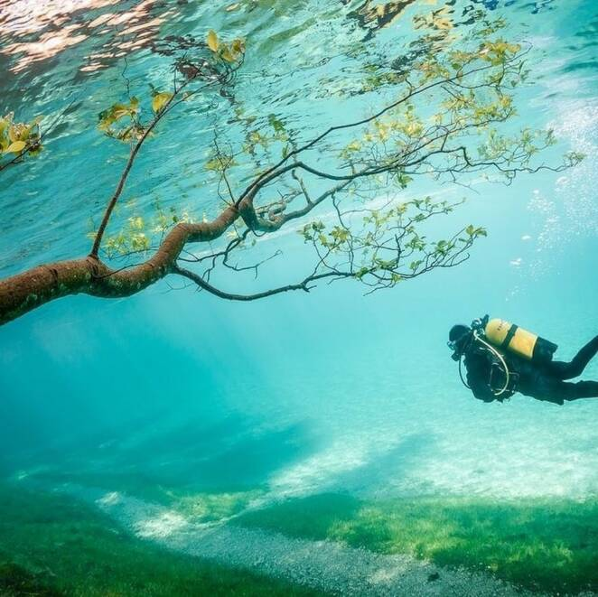 This Austrian Lake in Summer Becomes a Diver's Paradise
