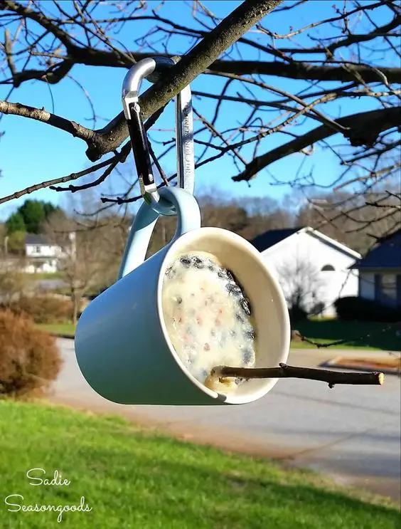 13 Ideas for Making Your Own Bird Feeder. Winged Friends Will Be in Ecstatic