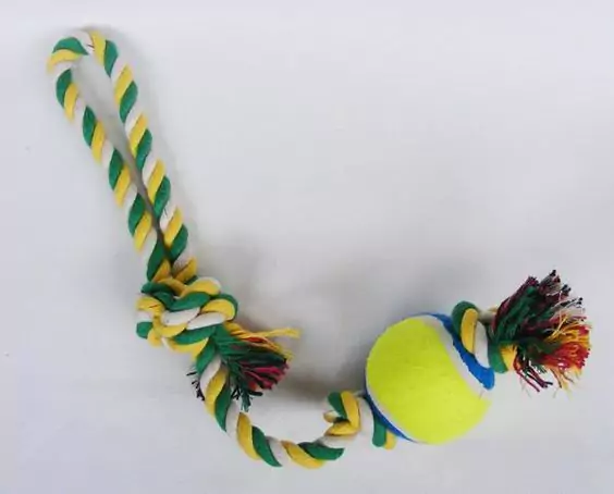 23 Surprising Ideas for Using Tennis Balls. Not Only Tennis Players Will Enjoy Them