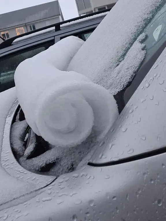 28 Unprecedented Works of Winter, Which Internet Users Simply Had to Share With Snow Lovers!