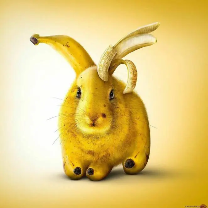 27 Totally Crazy Images Created by Graphic Designers, Digital Art and Composing