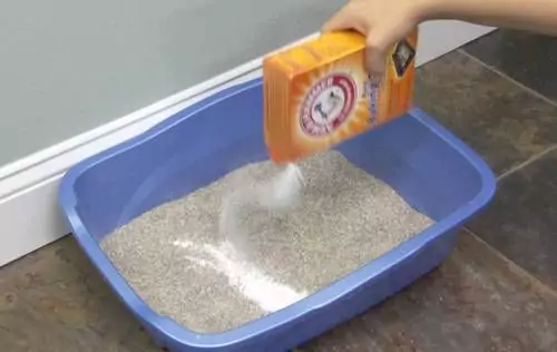27 Reasons Why you Should Always Have Baking Soda in Your Kitchen