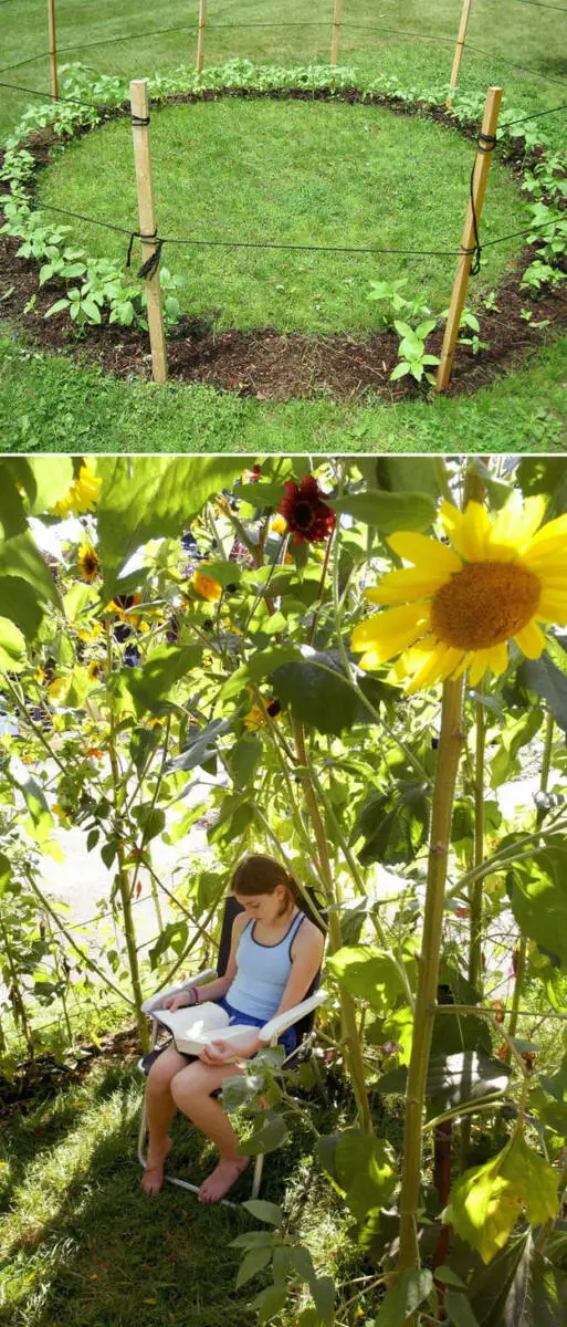 23 Passionate Plant and Vegetable Growers Share Their Gardening Hacks