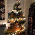 Christmas tree cellist