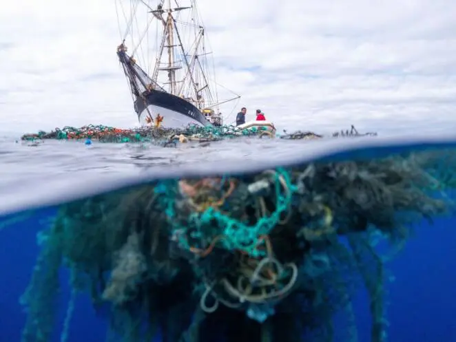 Tens of Tons of Plastic Are Collected from the Oceans Every Year!
