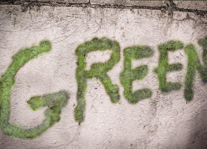 Moss-Grafitti-04