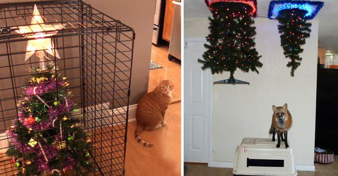Pets_christmas_tree_tips