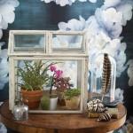 Plant-Terrarium-fi
