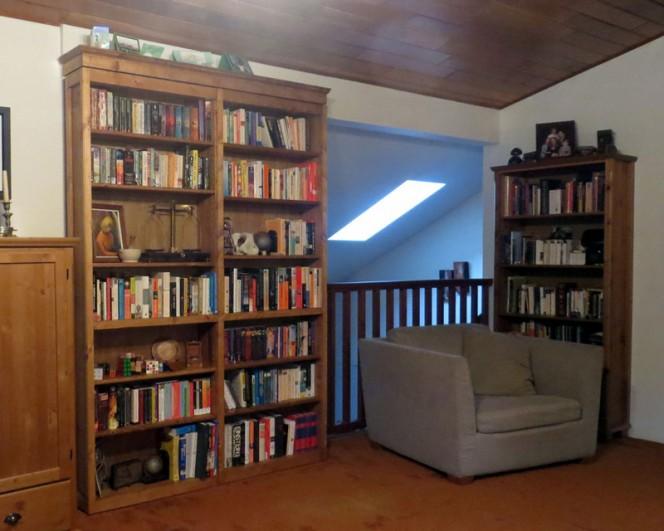 Secret-Door-Bookcase-05