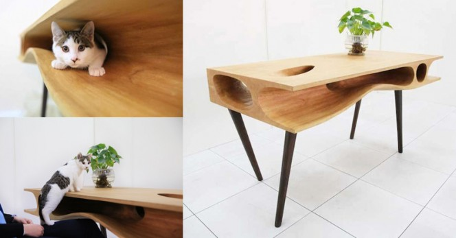 Shared-Table-for-People-and-Cats-fb