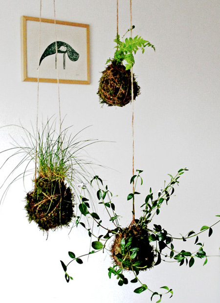 Wonderful-String-Gardens-fi