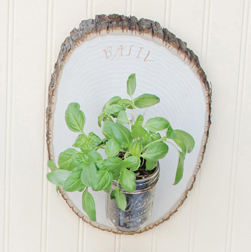 Woodland-Herb-Garden-02