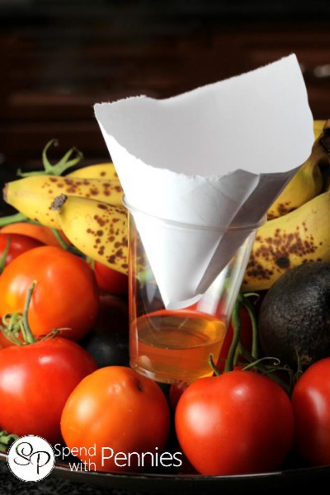 anti-fruit-flies-solution-03