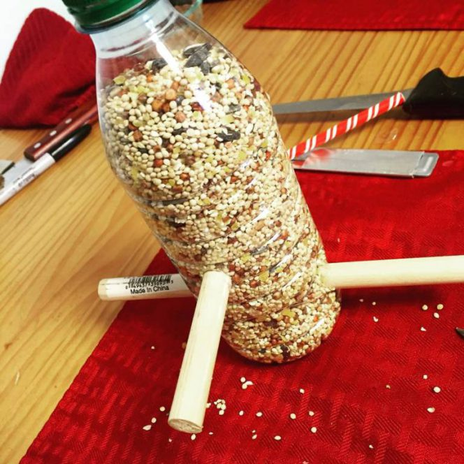 How to Re-Use Plastic Bottles? 16 Inspiring Ideas