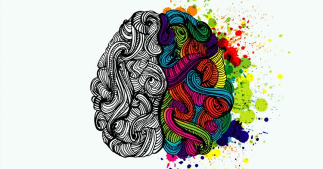 Find Out Which Is Your Dominant Brain Hemisphere
