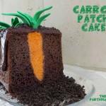 carrot-patch-cake-fi