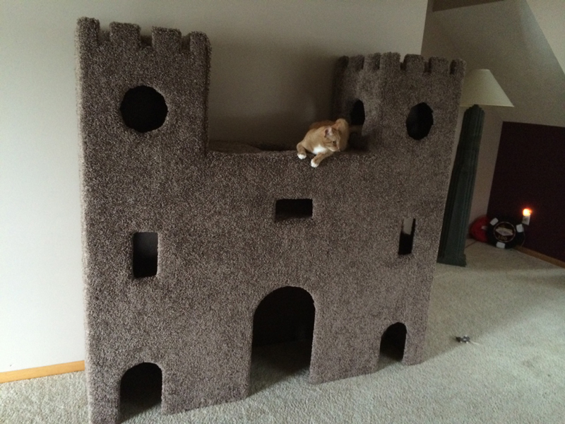 Cat castle for Castle cat tower