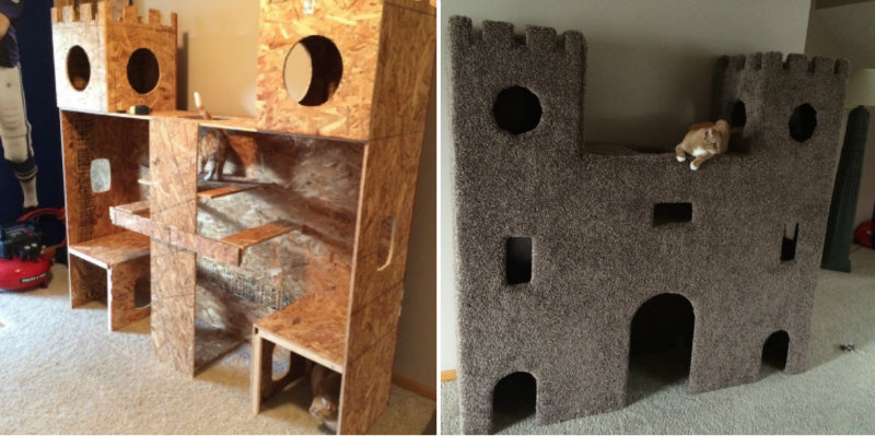 castle cat