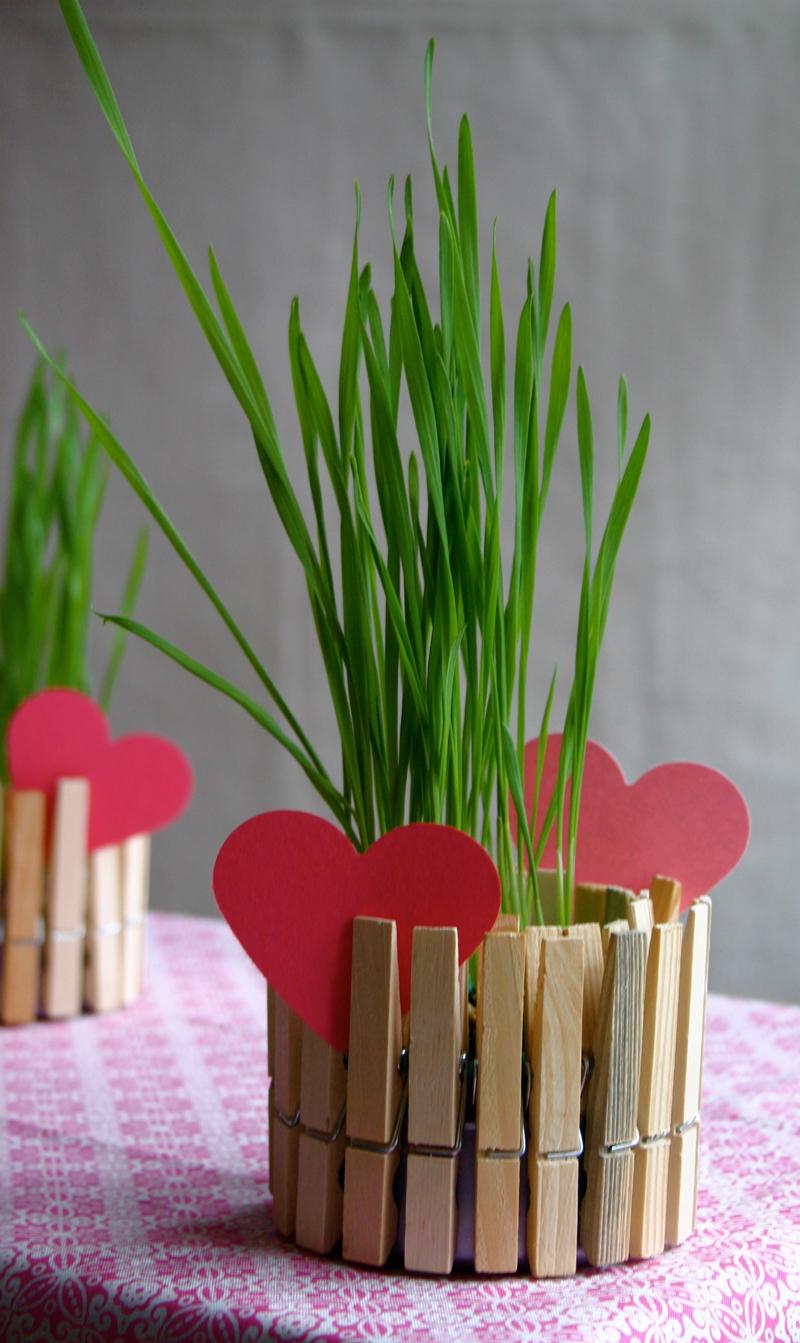 clothespin-planter-01