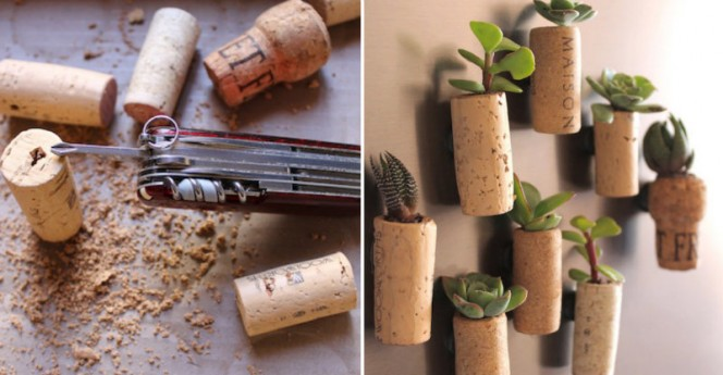 cork planters fb