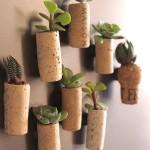 cork-planters-fi