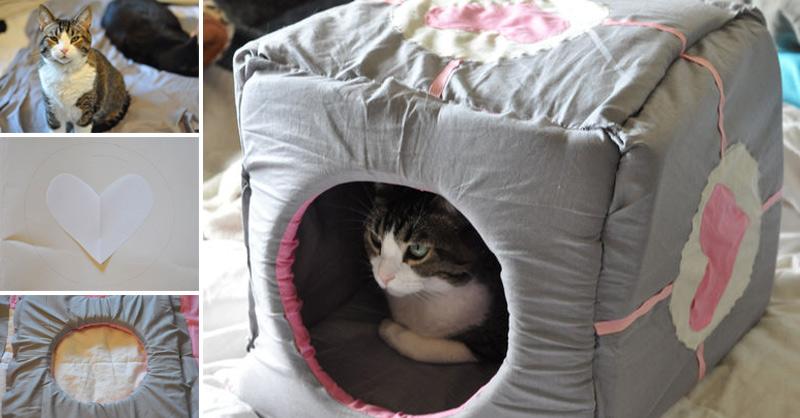 cosy-sponge-cat-cube-fb