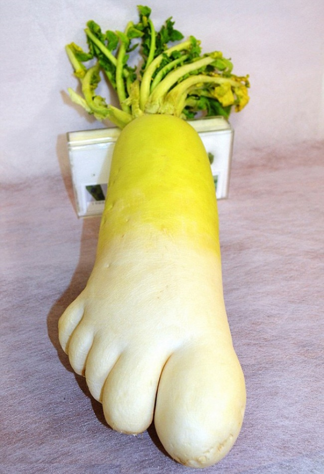 18 fruit and vegetables of really weird shapes. You have to look twice!