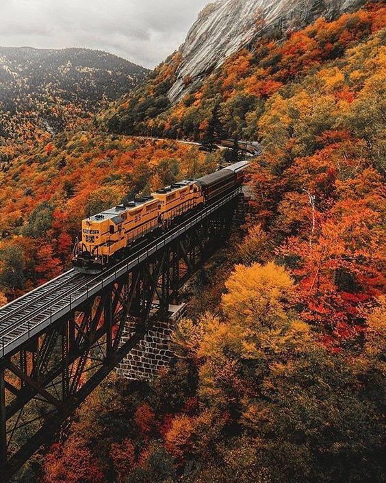 The Madness of Colors. 30 Breathtaking Fall Images You Won't Take Your Eyes Off