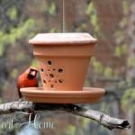 flower-pot-bird-feeder-fi