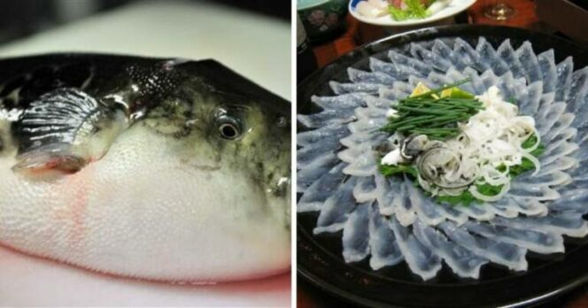8 Most Dangerous Foods on Our Planet. Eating Them Can Kill You!