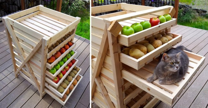 food-storage-shelf-fb-b
