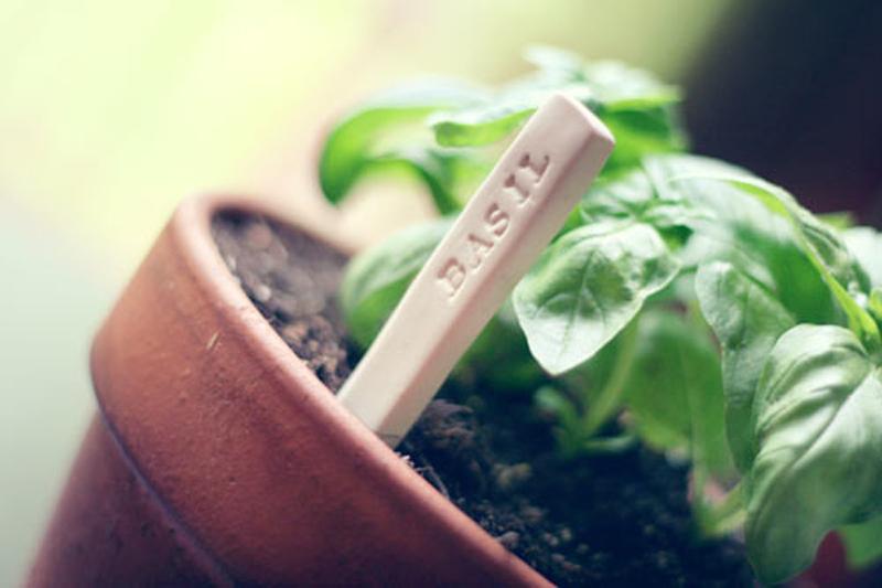 garden-markers-01