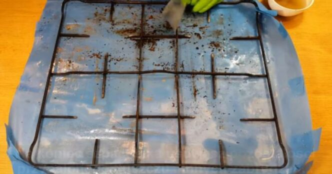 How to Clean a Cooker Grate? There Is an Easy and Eco-Friendly Way