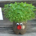 Green Head Planter