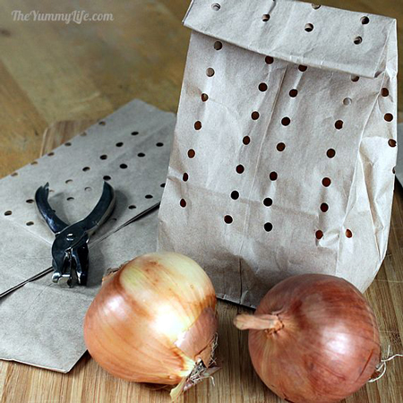 how-to-store-onion-and-garlic-fi