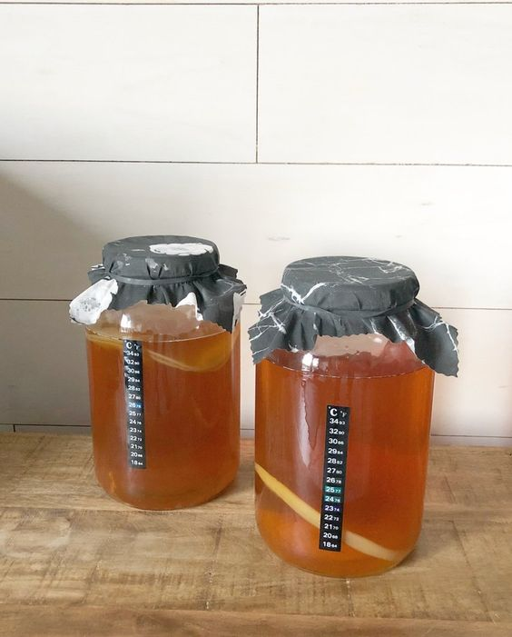 Kombucha Conquers the World! You Can Easily Prepare One of the Healthiest Teas at Home?