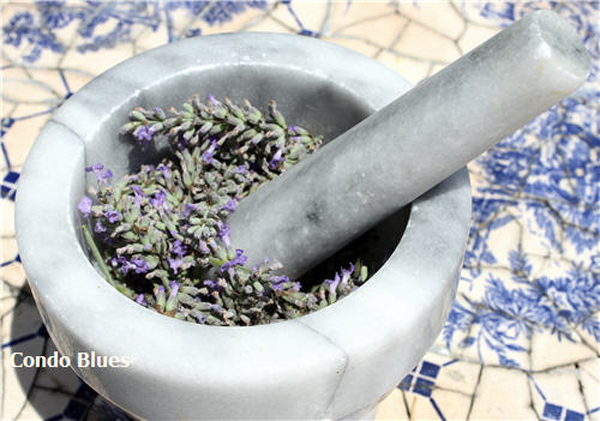 lavender-extract-02