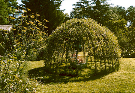 living-willow-dome-fi