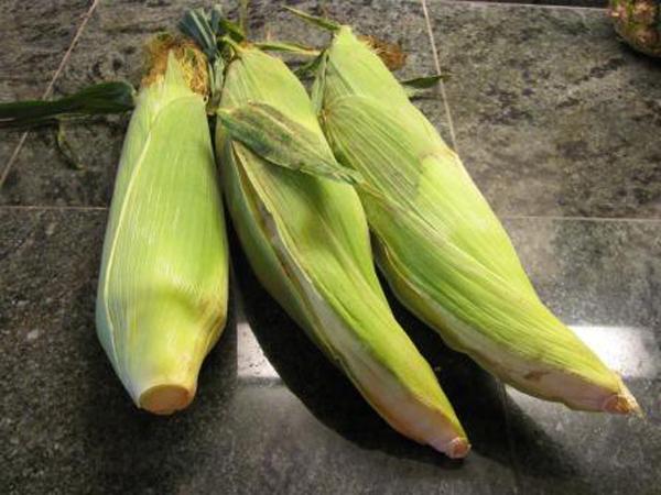 magic-corn-trick-01