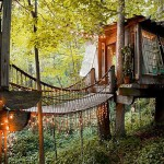 magic-treehouse-in-the-city-fi