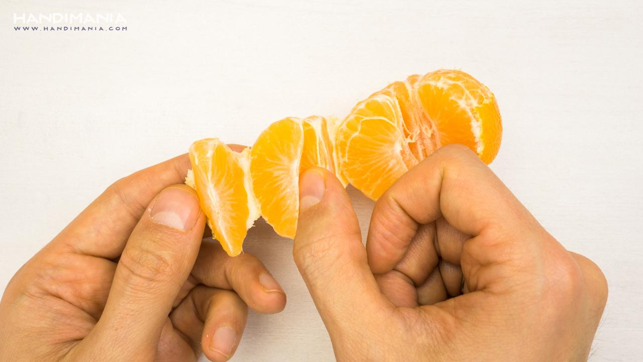 mandarin-18-11-15-hdma-0055